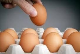 Preguntas y Respuestas sobre los Huevos Contaminados en Europa